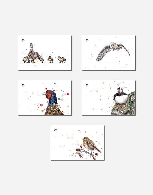 Feathers Collection | Mixed Set of 5 Gift Tags