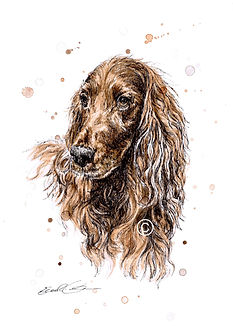 Red Setter, Dog Portrait, Eleanor Tomlinson