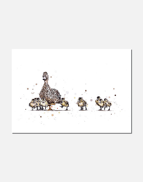 Mother Duck | Signed Limited Edition Print