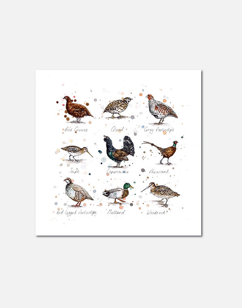 Game Birds | Signed Limited Edition Print