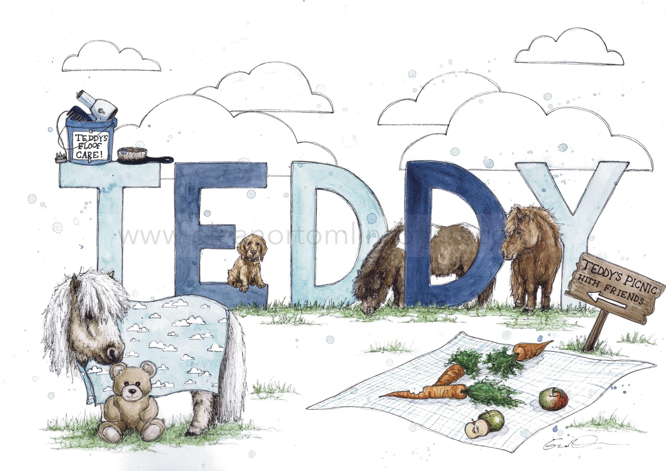 TEDDY THE SHETLAND