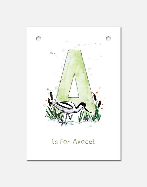 A is for Avocet | Alphabet Bunting