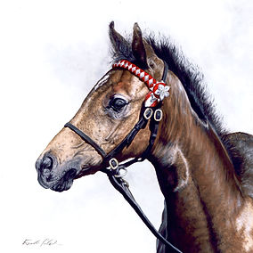 Horse Oil Painting Portrait, Eleanor Tomlinson