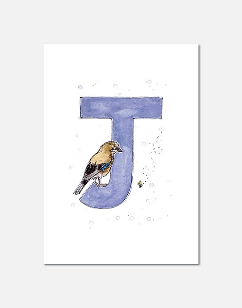Letter J | Personalisable Alphabet Limited Edition Print