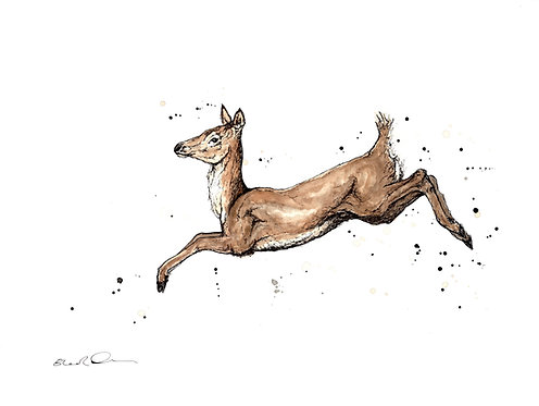 The Leap | Original Ink & Watercolour