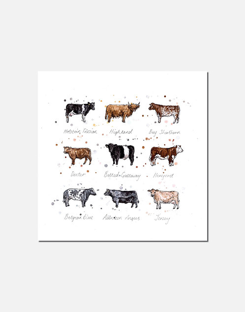 Moo | Signed Limited Edition Print