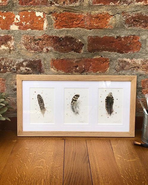 Game Bird Feather Study Trio | Original Ink & Watercolour