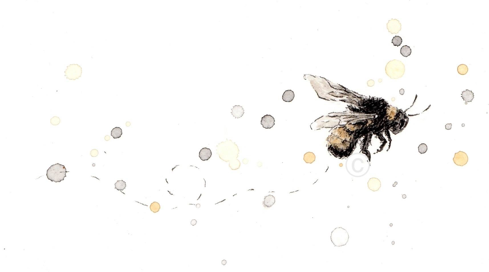 SINGLE FLYING BEE