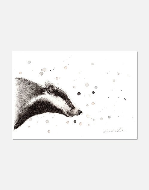 Badger | Signed Limited Edition Print