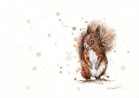 Red Squirrel | Original Ink & Watercolour
