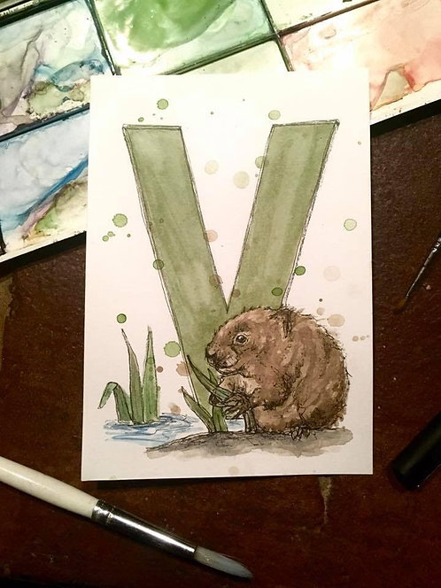 V is for Vole | Original Ink & Watercolour