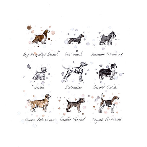 Dog Breeds | Original Ink & Watercolour