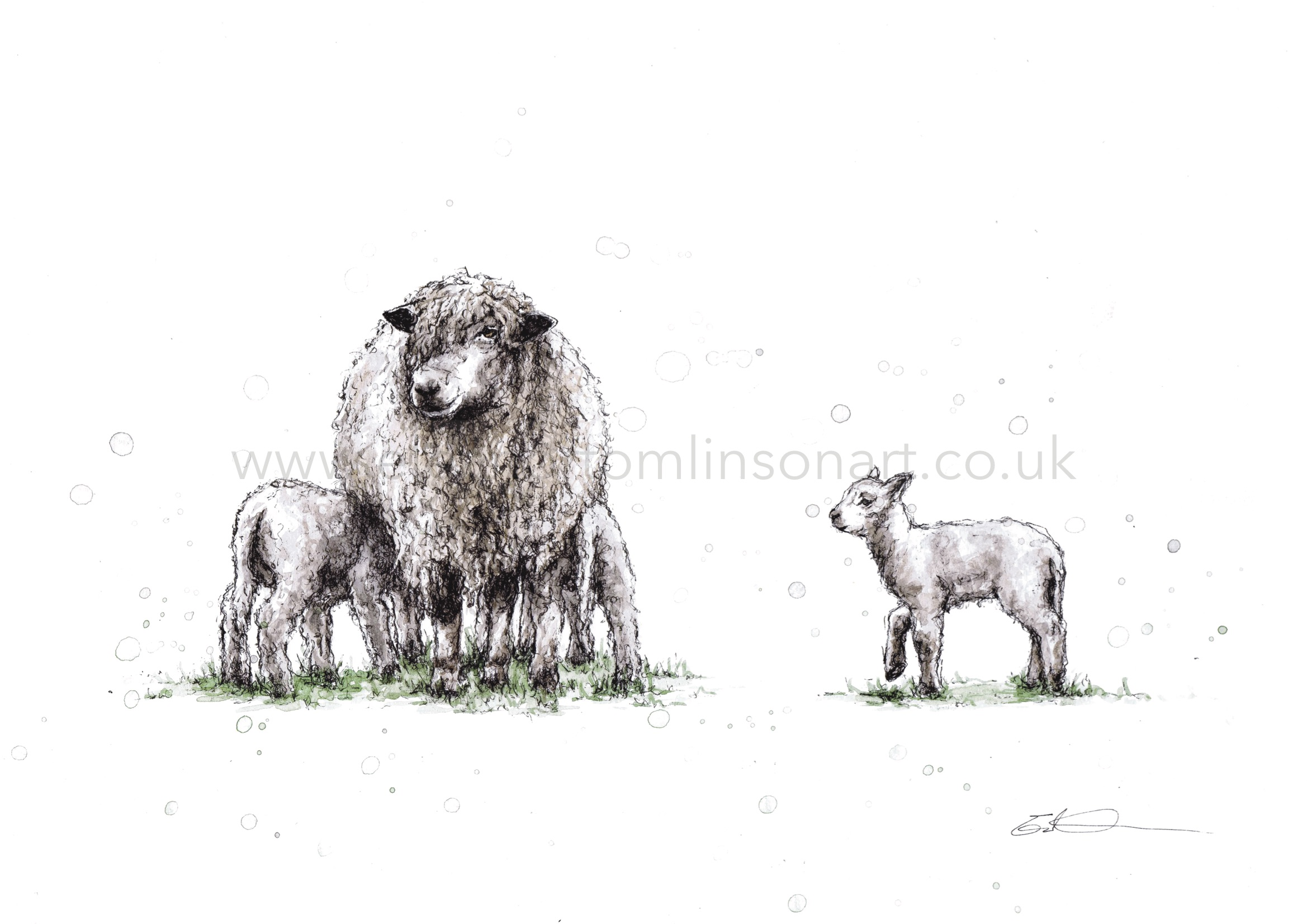 THREE'S A CROWD | SLEDMERE LONGWOOLS