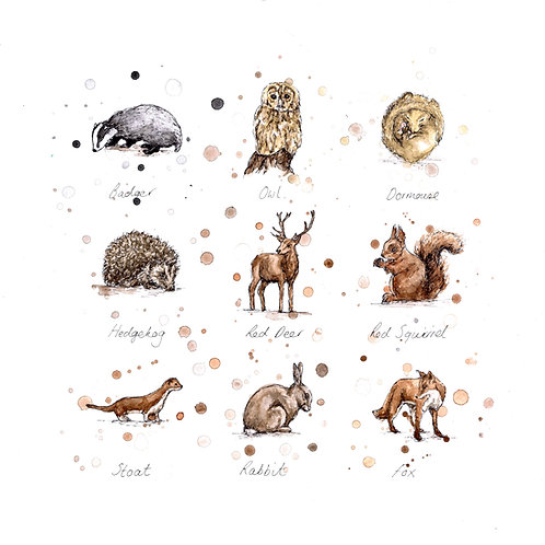 Woodland Wildlife | Original Ink & Watercolour