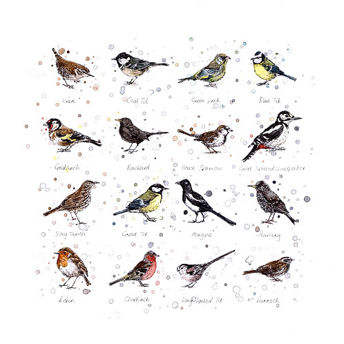 Garden Birds | Original Ink & Watercolour
