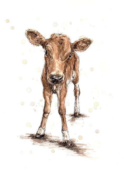 Calf | Original Ink & Watercolour
