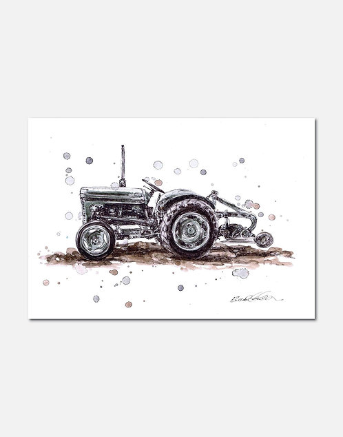 Little Grey Fergie | Signed Limited Edition Print