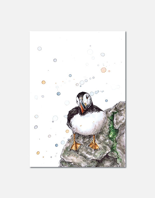 Bempton | Signed Limited Edition Print