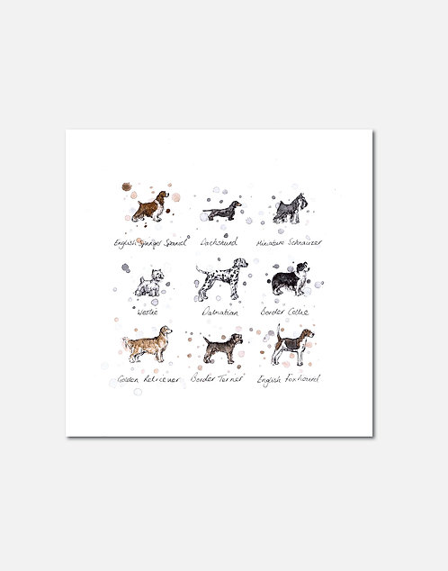 Dog Breeds | Signed Limited Edition Print