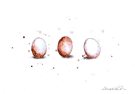 Egg Trio Study | Original Ink & Watercolour