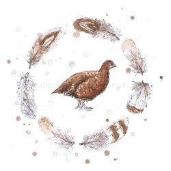 RED GROUSE WREATH