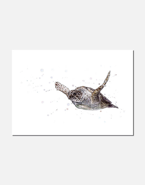 Into the Deep | Signed Limited Edition Print