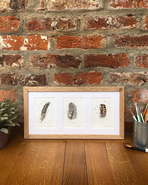 Game Bird Feather Study Trio | Original Ink & Watercolour