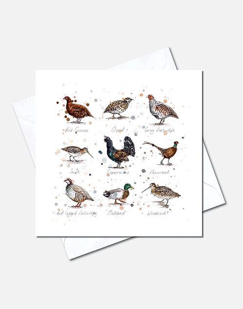 Game Birds | Card Design