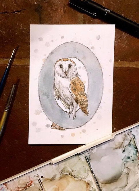 O is for Owl | Original Ink & Watercolour