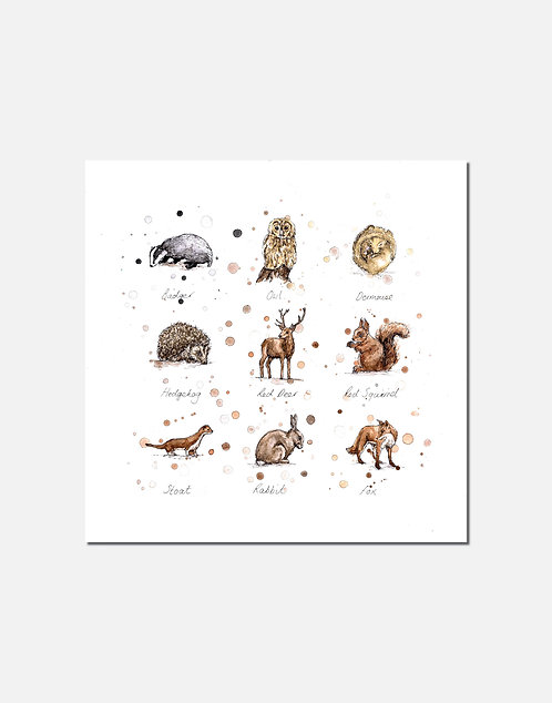 Woodland Wildlife | Signed Limited Edition Print
