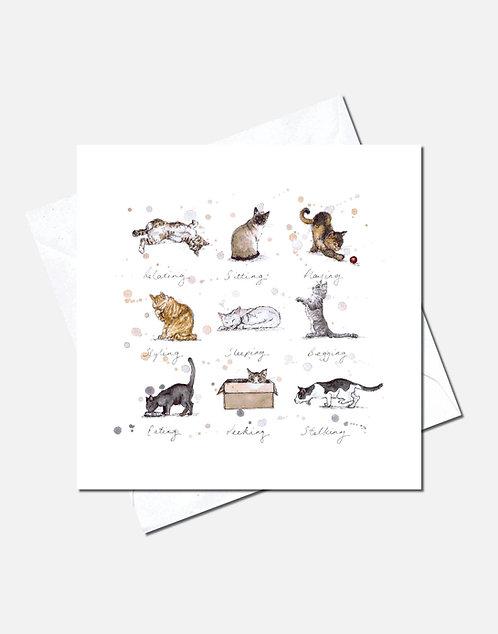 Meow | Card Design