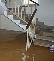 flooded basement.png