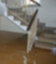 flooded basement.png
