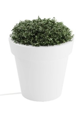 Tera Small Lighted Planter