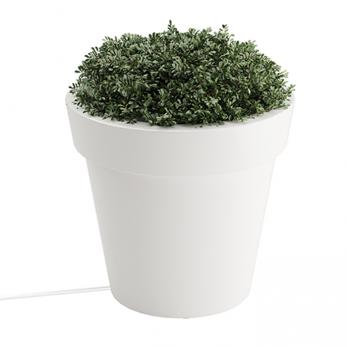 Tera Medium LED Planter