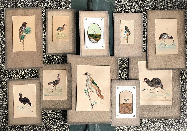 """Set of 10 vintage collages - """"Birds"""""""