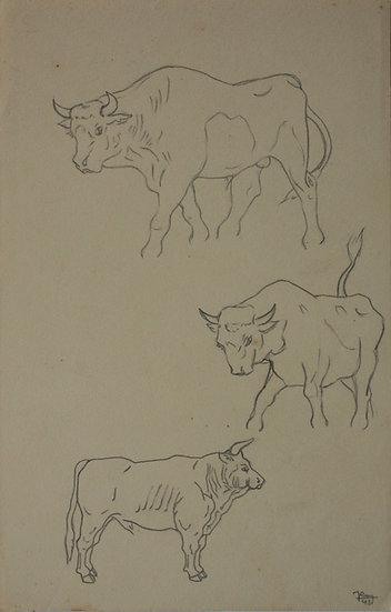 """Vintage Drawing - """"Cow Studies"""" 1941 #11"""