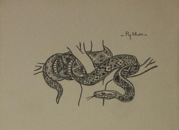 """Dessin Vintage - """"Étude de Serpent - Python"""" - 1941 #18"""