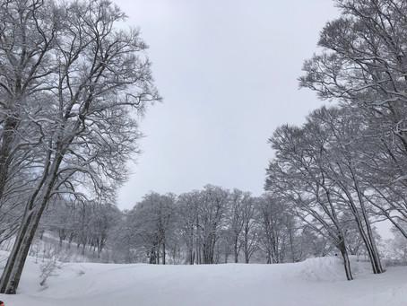 2月17日、18日野沢温泉SKI