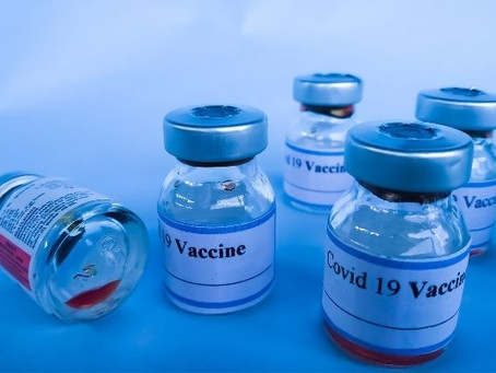 Vaccine Transportation Bag; Independent Testing