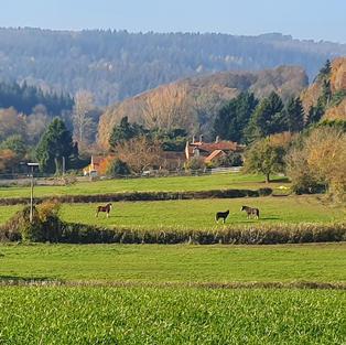 Huntley Woods