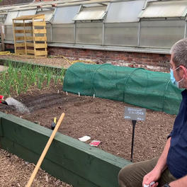 Sowing Beetroot Seeds At Twigs