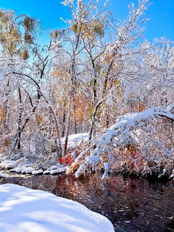 WINTER ON THE BEND