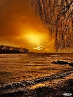 SILENT RAIN