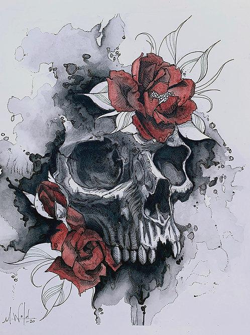 Skull and Rose Study | Original Drawing