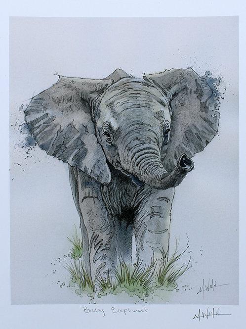 Baby Elephant  | Fine Art Print