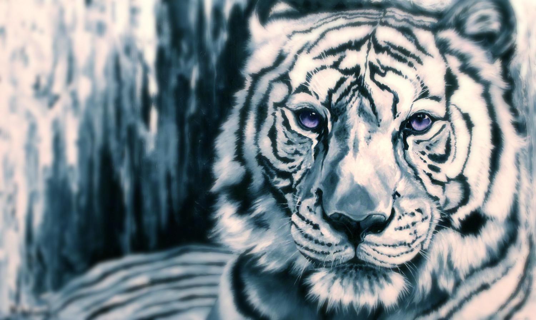 """Sapphire Tiger"""