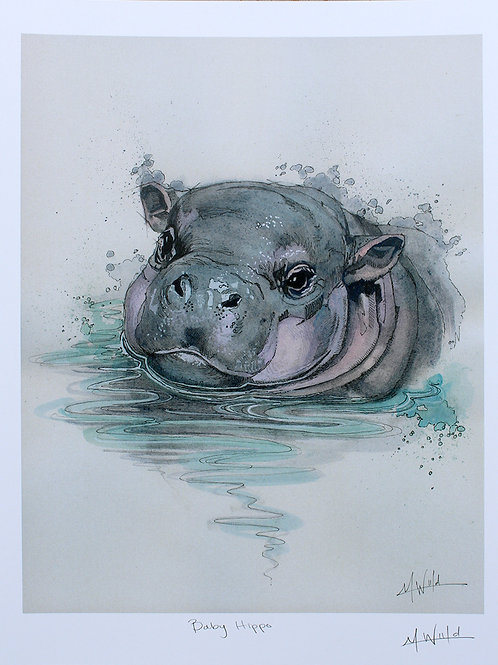 Baby Hippo | Fine Art Print