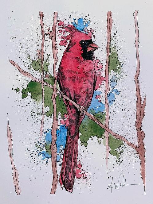 Scarlet Ohio | Original Drawing