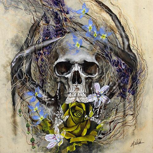 Prevail | Fine Art Print